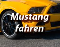 Mustang fahren