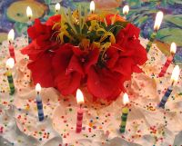 Geschenkidee Geburtstag